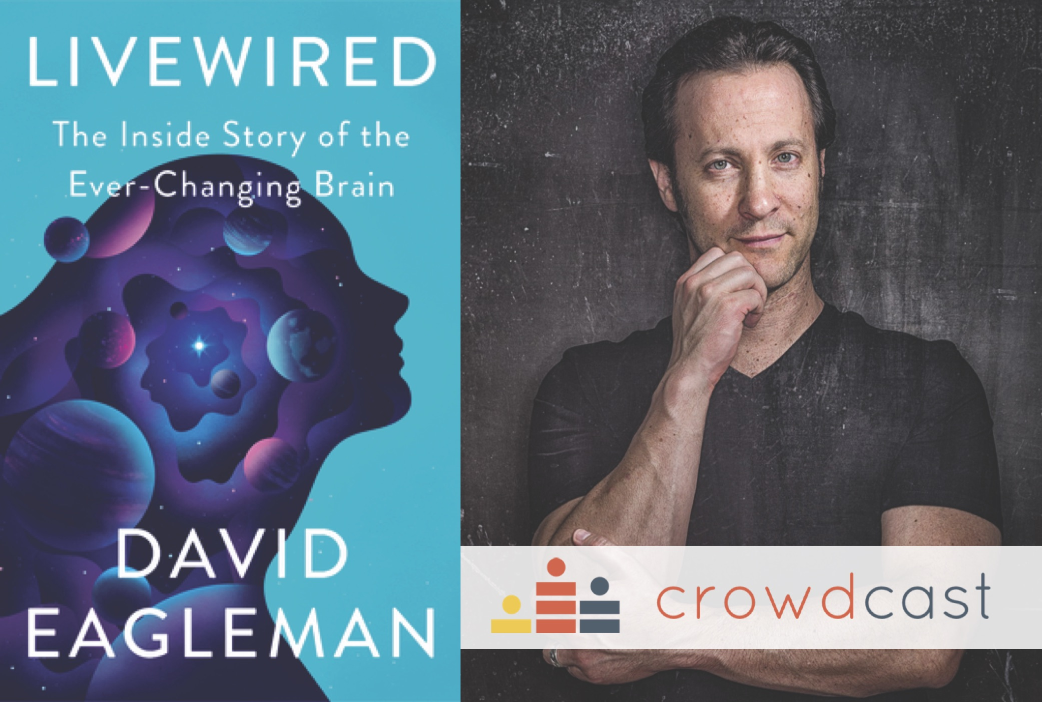 david eagleman livewired bookshop santa cruz